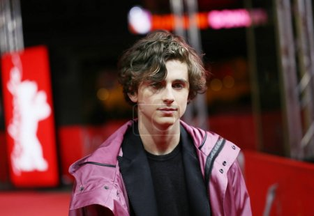 Timothee Chalamet attends the 'Call Me by Your Name'