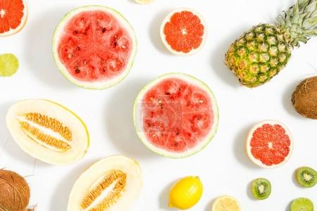 Watermelon, coconut, melon, grapefruit, lime, lemon and pineappl