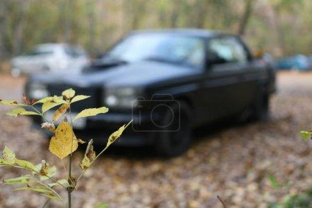 German Mercedes Benz motor car