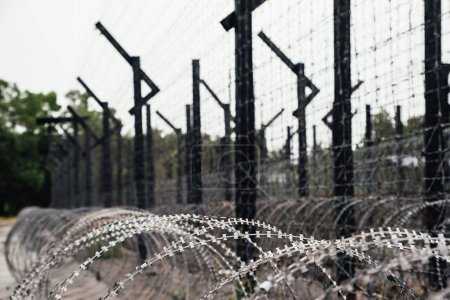 Heavy duty barbed wire.