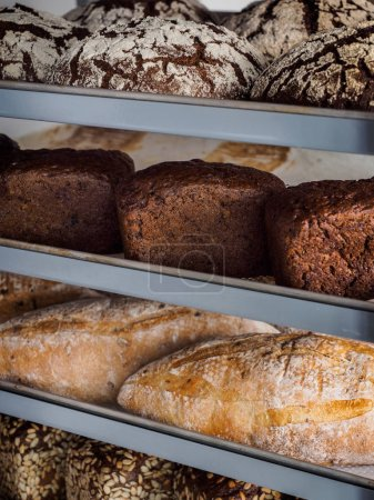 Variety of freshly baked breads: rye, wholewheat and white bread on a metallic shelves in a bakery