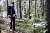 A man is a tourist in a pine forest with a backpack. A hiking tr