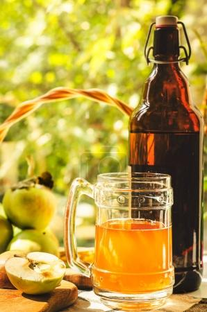 Apples, apple cider ale in beer glass and bottle on check pattern tablecloth. Rustic style. Selective focus