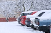 cars are immobile from because of snow