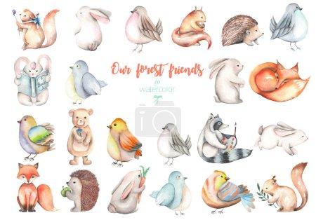Photo pour Collection, ensemble d'aquarelle mignon animaux de la forêt illustrations, dessiné à la main isolé sur un fond blanc - image libre de droit