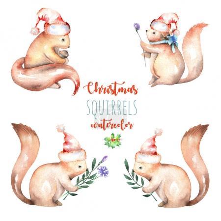 Photo pour Ensemble d'aquarelle mignon écureuils de Noël illustrations, dessiné à la main isolé sur un fond blanc - image libre de droit
