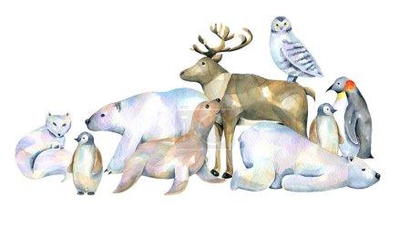 Photo pour Aquarelle mignon animaux polaires illustrations, dessiné à la main isolé sur un fond blanc - image libre de droit