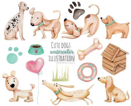 Photo pour Aquarelle mignonne drôle de chiens et éléments collection, dessiné à la main isolé sur un fond blanc - image libre de droit