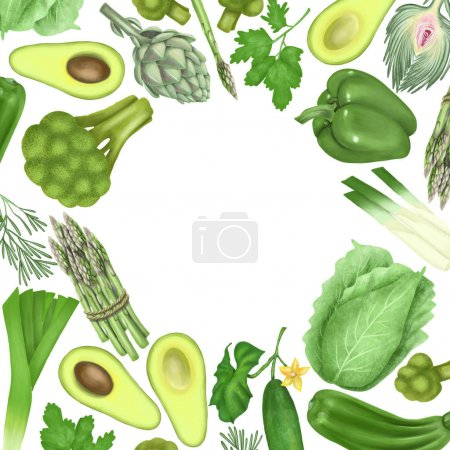 Photo for Round frame of green vegetables and fruits (avocado, pepper, cucumber, artichoke, broccoli, cabbage, asparagus), hand drawn on a white background - Royalty Free Image