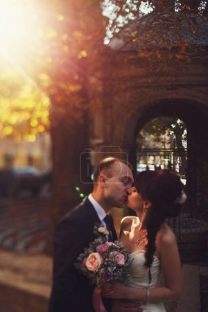 Bride and groom kiss tenderly standing in the old backyard