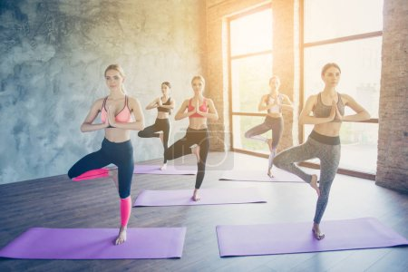 Namaste! Five young concentrated women are doing complex yoga ex