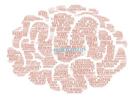 Brain Plasticity Brain Word Cloud