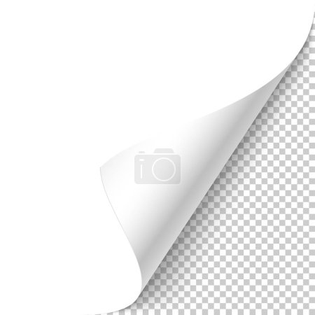 Illustration for Blank white curled corner page, vector illustration - Royalty Free Image