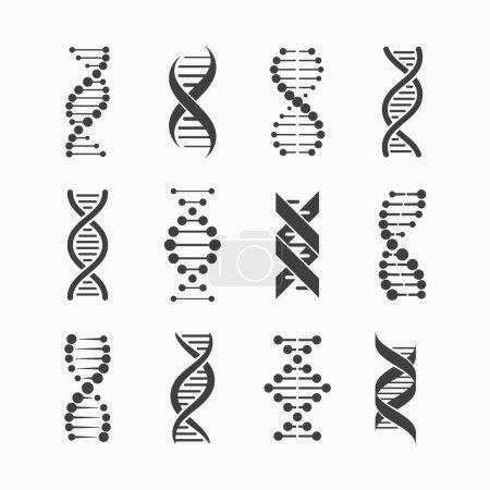 set of grey DNA strands