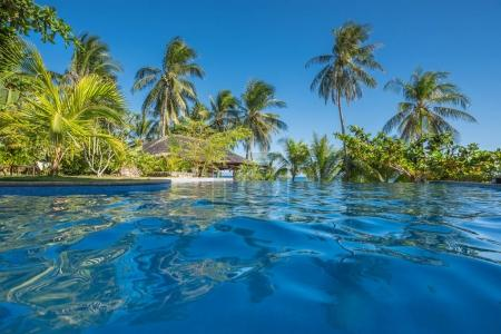 Natural background from Boracay island with coconut palms tree leaves, blue sky and white beach
