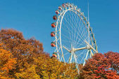 Brightly colored Ferris wheel against the blue sky and fall tree