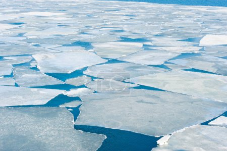 breaking spring ice floe at