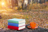 Stack of books and a cup of hot coffee on old wooden table in the forest at sunset. Back to school. Education concept. Beautiful autumn background. Picturesque composition. Weekend in the Park.