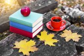 Stack of colorful books and a cup of hot coffee on old wooden table in the forest. Back to school. Education concept. Beautiful autumn background. Picturesque composition. Weekend in the Park.