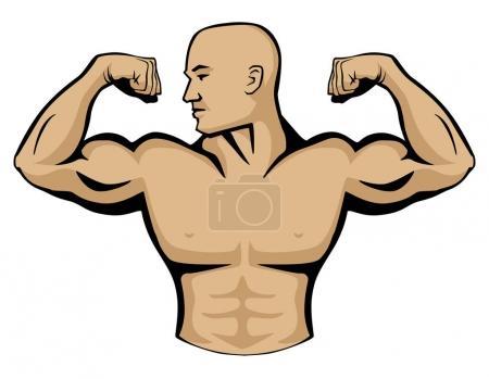 Illustration pour Illustration graphique vectorielle du bodybuilder masculin, muscles fléchissants des bras, tête tournée vers la droite. Lignes très propres, look simple mais professionnel . - image libre de droit