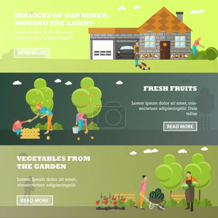 Illustration for Vector banners of garden activities. Take care of the garden, mowing lawn, picking fruits, harvesting vegetables from garden patch. Gardening, agriculture and horticulture. Flat design - Royalty Free Image