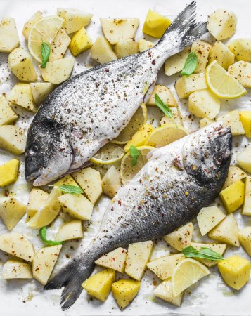 Photo for Raw uncooked lunch - spiced potatoes, sage, lemon and dorado on a baking sheet, top view - Royalty Free Image