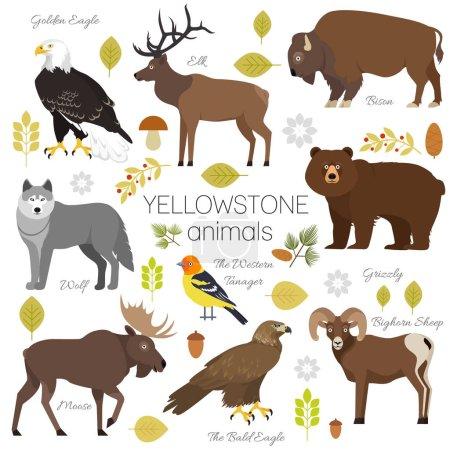 Illustration pour Parc national Yellowstone animaux mis grizzli, orignal, wapiti, ours, loup, aigle royal, bison, mouflon d'Amérique, pygargue à tête blanche, tanager occidental, isolé sur fond transparent illustration vectorielle . - image libre de droit