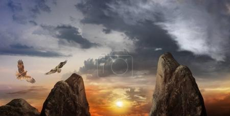 Photo for Dramatic colorful sky . Light in dark sky . beautiful cloud .  Wildlife scene . Couple of birds in clouds - Royalty Free Image