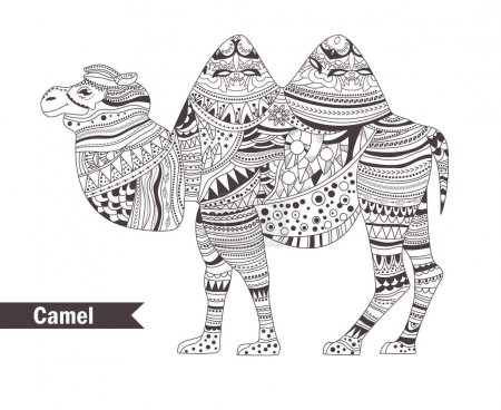 Camel. coloring book for adult, antistress colorin...