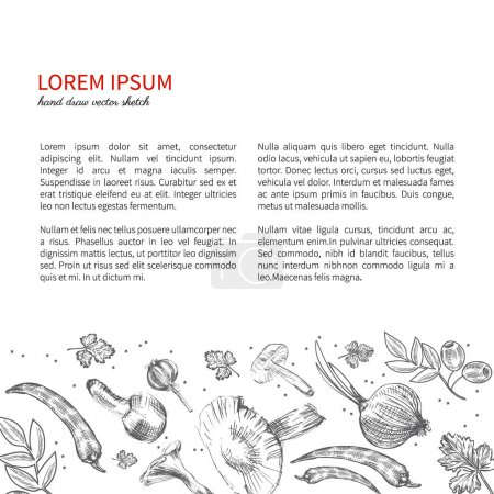 Hand drawn sketch vegetables, Vector illustration mushrooms, olive, pepper, onion isolated on white, Ideal for use in organic food industry, healthy green foods market, vegetarian restaurant menu