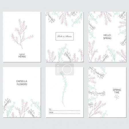 covers for greeting cards with capsella flowers