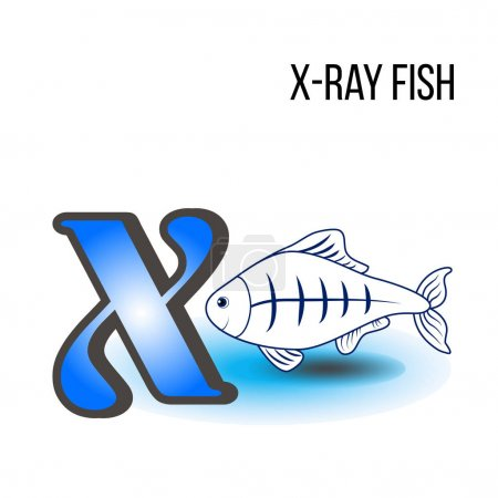 Cute Zoo alphabet X with cartoon xray-fish, kid wild animal vector funny illustration isolated on background, Education for children, preschool, ABC poster for learn to read, character design, mascot