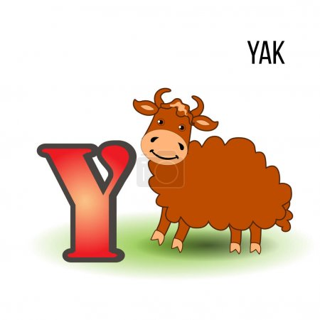 Cute Zoo alphabet Y with cartoon yak, kid wild animal vector funny illustration isolated on white background, Education for children, preschool, ABC poster for learn to read, character design, mascot