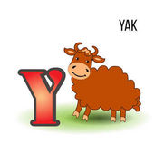 Cute Zoo alphabet Y with cartoon yak kid wild animal vector funny illustration isolated on white background Education for children preschool ABC poster for learn to read character design mascot