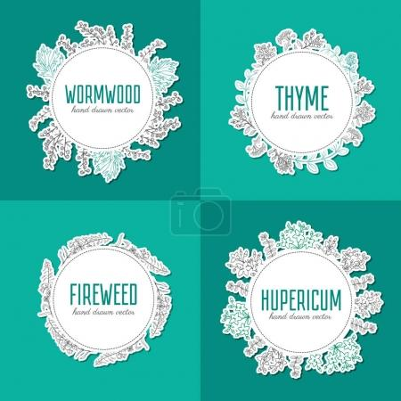 Willow herb, fireweed, rosebay, Blossoming hupericum, thyme, artemisia, absinthe wormwood hand drawn sketch vector isolated on white, Round frame, wreath for label, sticker, packaging tea, cosmetics