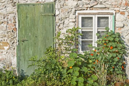 Idyll at old house