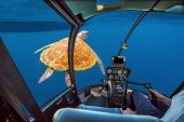 Sea Turtle submarine