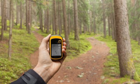 Finding the right position in the forest via gps ( blurred background )