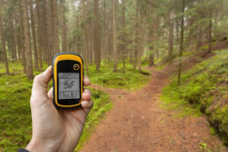 Finding the right position in the forest via gps ( blurred background)