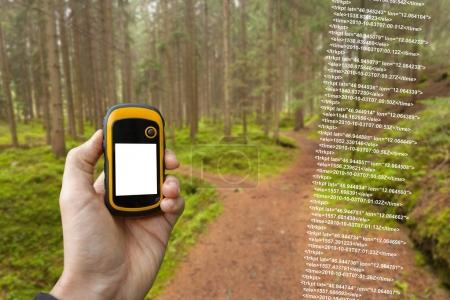 A trekker is finding the right position in the forest via gps in a cloudy autumnal day