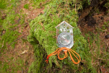 finding the right position in the forest with a kompass