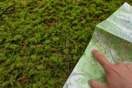 finding the right position in the forest with a map