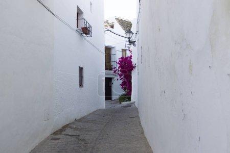 Photo pour Façades de maisons dans le village blanc Vejer de la Frontera en Andalousie - image libre de droit