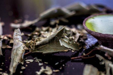 Photo pour Gros plan de la pâte d'arbre de Banyan dans un bol d'argile sur une surface brillante noire avec de la poudre de feuilles séchées ou des feuilles d'arbre de Banyan. Broyer la poudre de feuilles d'arbre de Banyan bien mélangées avec de l'eau dans un bol . - image libre de droit