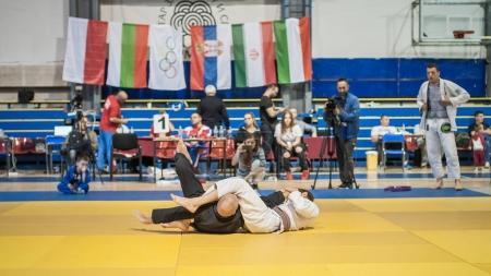Martial Art Instructor Demonstrate Brazilian Jiu-jitsu Technique