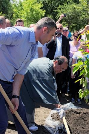 KYIV (KIEV), UKRAINE04 JUNE 2017: Official opening of the Kyoto Park in Kiev. Mayor of Kiev Vitali Klitschko and Mayor of Kyoto Daisaku Kadokawa are planting an sakura tree