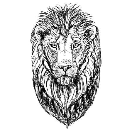 Illustration pour Croquis de tête de lion dessiné à la main. Rétro réaliste animal isolé. Style vintage. Conception graphique de ligne Doodle. Mammifère dessin noir et blanc. Illustration vectorielle . - image libre de droit
