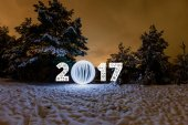 2017 New Year greeting card