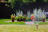 Garden sprinkler watering grass and flowers