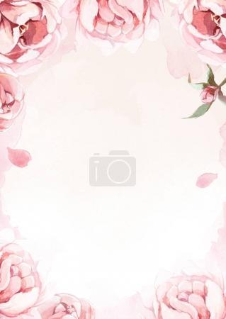 acuarela rosa, rosa y peonías rojas sobre fondo rosa por gr